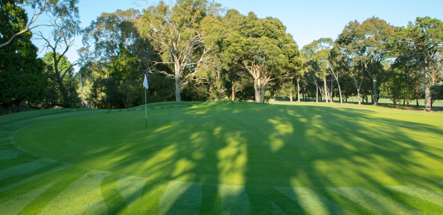 Play golf in Melbourne