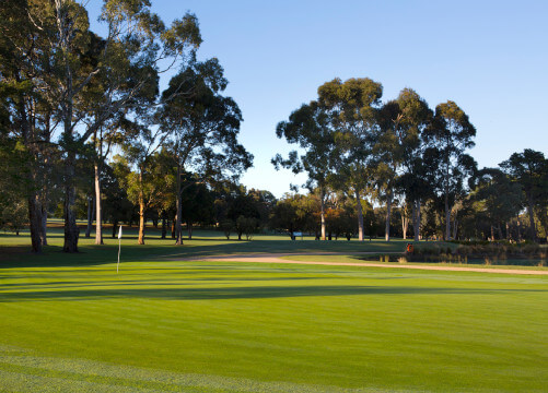golf course melbourne