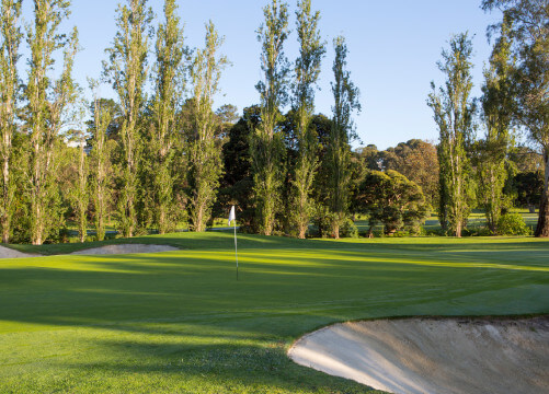 box hill golf bunker