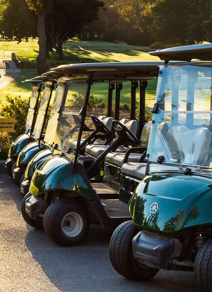Box Hill Golf Club carts